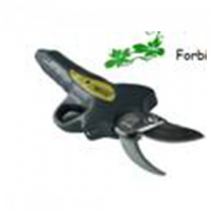 FOARFECI-ELECTRICE